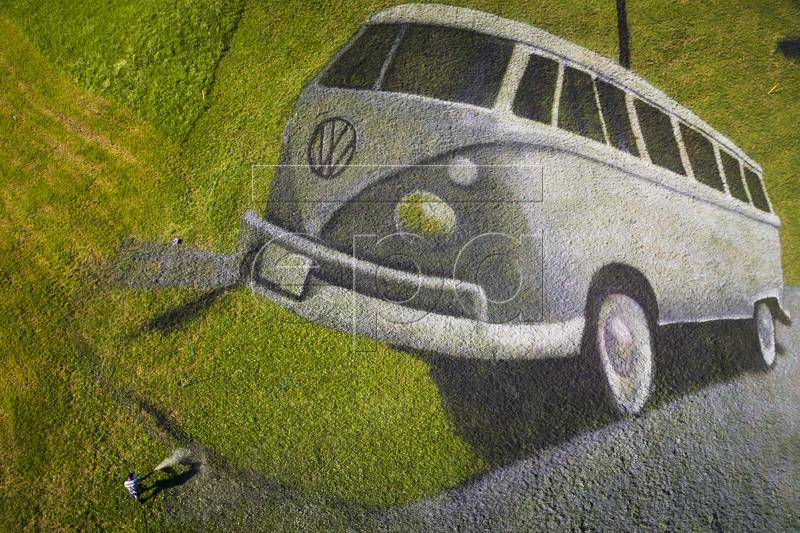 Француз нарисовал VW Bus на лугу, с квадрокоптера выглядит неплохо