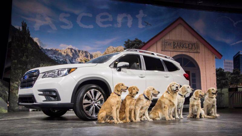 В трехрядный Subaru Ascent теперь помещается 7 больших собак