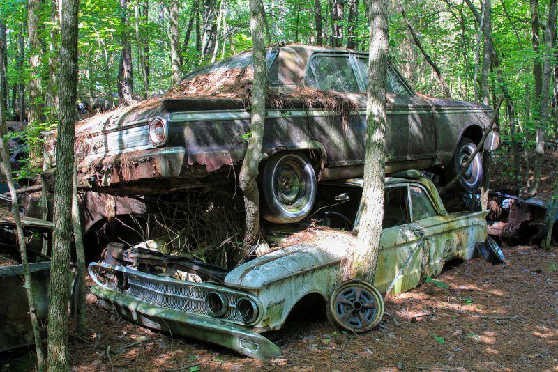 Автомобильные кладбища в лесах: и жутко, и странно, и интересно